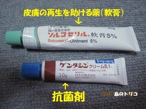 1 くららちゃんの腫瘤を守るための薬2種.JPG