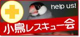 小鳥レスキュー会 バナー.png