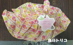 11 こうママさんの手作り袋.jpg