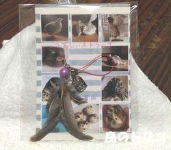 16 蜜瓜さんのお土産 ウズラの羽のキーホルダー.jpg