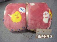19 ひざ掛け写真.JPG