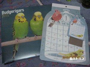 1 インコカレンダー2015年.JPG