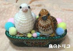 26 茶子と一緒になった編みぐるみ写真.jpg