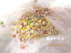 4 白い粒がローファット粒.JPG