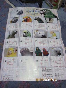 5 コンパまるから届いたカレンダー.JPG