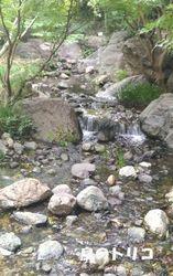 9 小さな滝の写真.jpg
